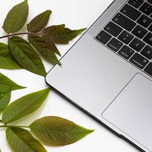 Diseño web coruña. Páginas web.